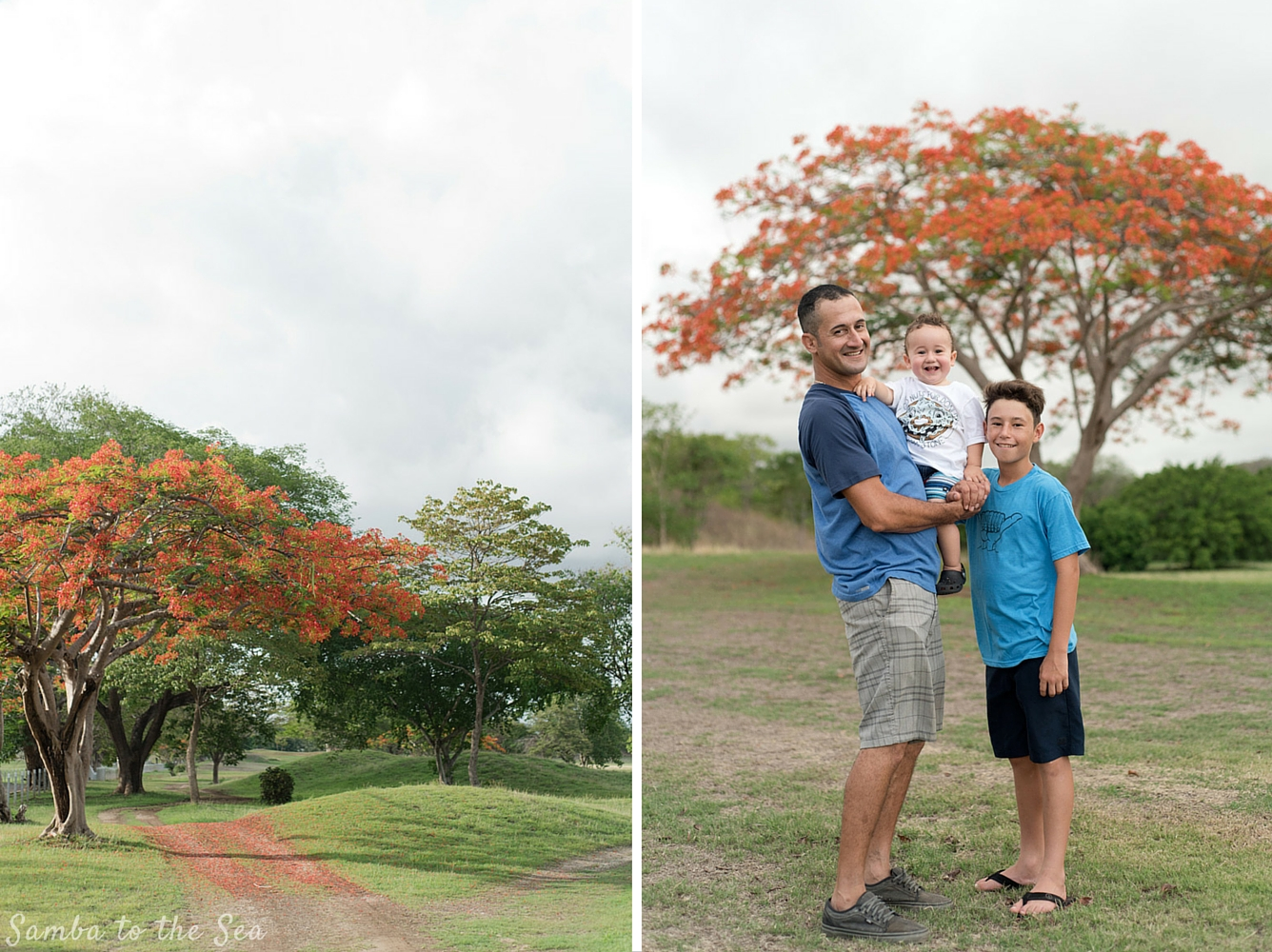 Father and son with beautiful Malinche trees in full bloom in Playa Grande, Costa Rica. Photographed by Kristen M. Brown, Samba to the Sea Photography.