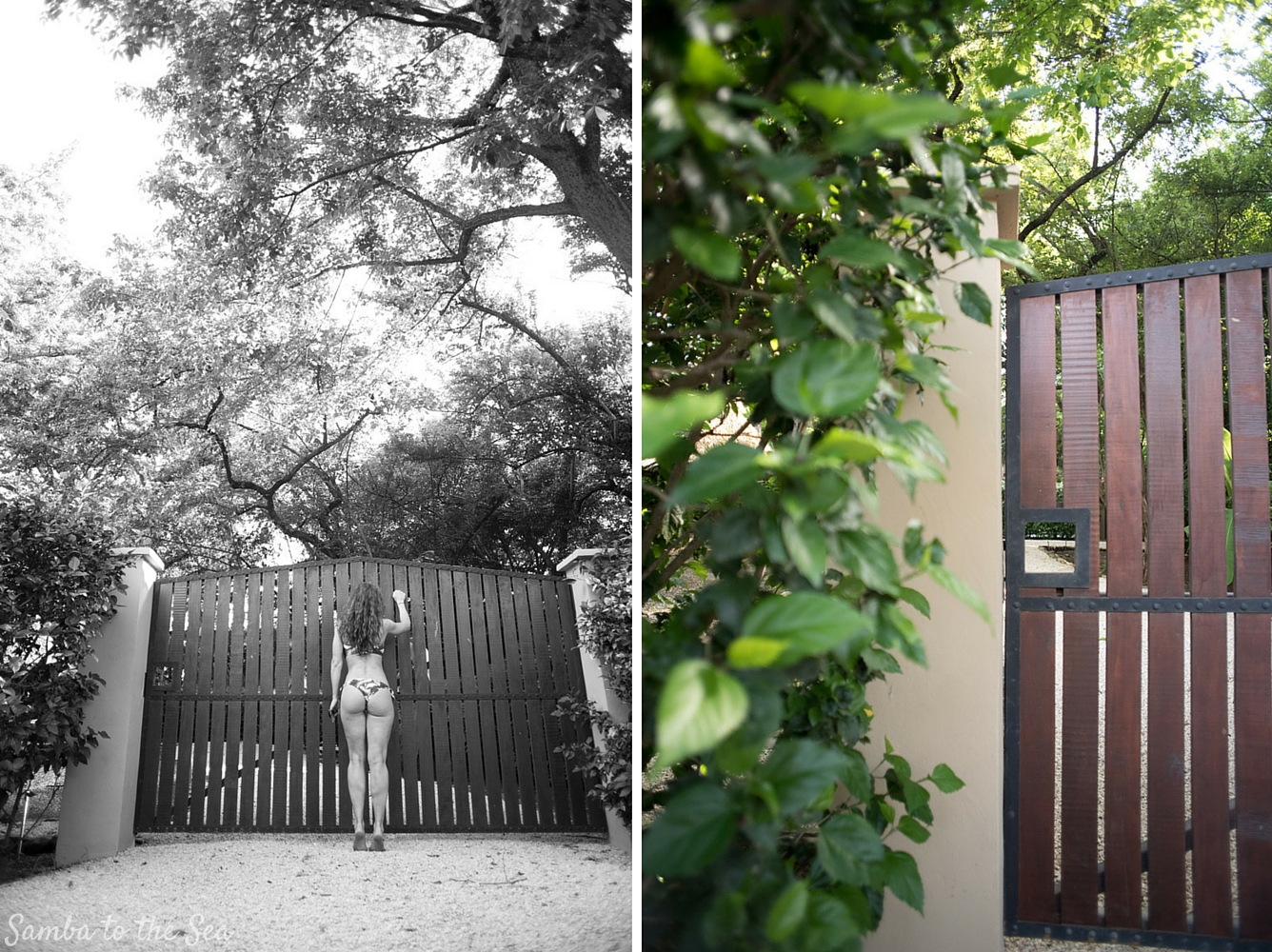Kim knocking on a gate in Nosara, Costa Rica. Photographed by Kristen M. Brown, Samba to the Sea Photography.