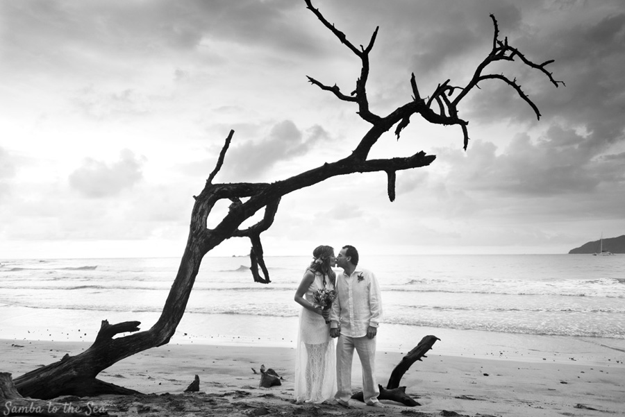 Couple kissing under a beautiful driftwood tree during their elopement in Tamarindo, Costa Rica. Photographed by Kristen M. Brown, Samba to the Sea Photography.
