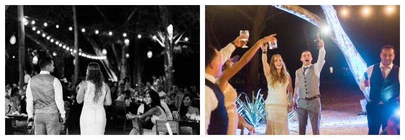 Toasts at wedding in Tamarindo, Costa RicaPhotographed by Kristen M. Brown, Samba to the Sea Photography.