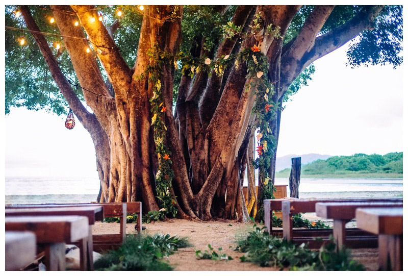 Wedding ceremony under a gorgeous tree. Wedding at Pangas Beach Club in Tamarindo, Costa Rica. Photographed by Kristen M. Brown, Samba to the Sea Photography.