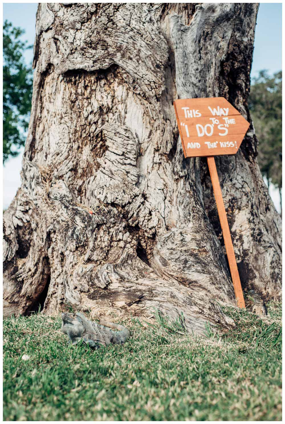 Iguana and wedding sign. Wedding in Guanacaste Costa Rica. Photographed by Kristen M. Brown, Samba to the Sea Photography.