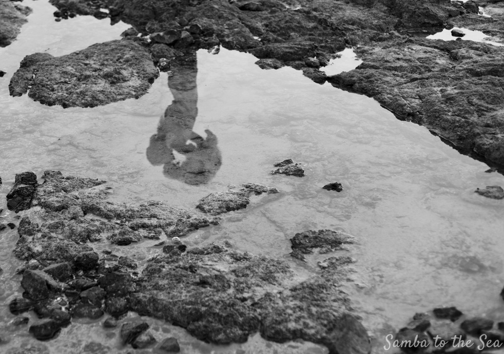 Black and white photo of low tide pool reflections of Waffles the Cavapoo and Theresa in Playa Tamarindo, Costa Rica. Photographed by Kristen M. Brown, Samba to the Sea Photography.