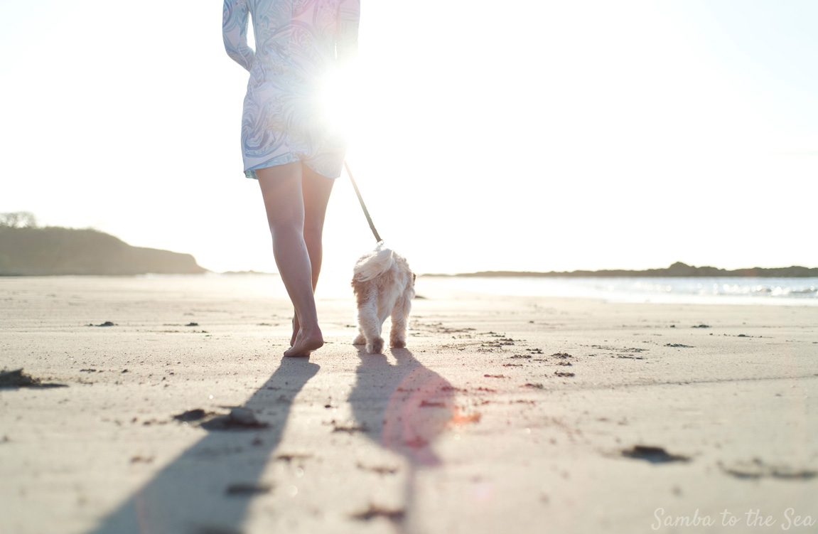 Waffles the Cavapoo and Theresa walking on the beach during golden hour in Tamarindo, Costa Rica. Theresa is wearing the Lilly Pulitzer Marlina Printed T-Shirt Dress. Photographed by Kristen M. Brown, Samba to the Sea Photography.