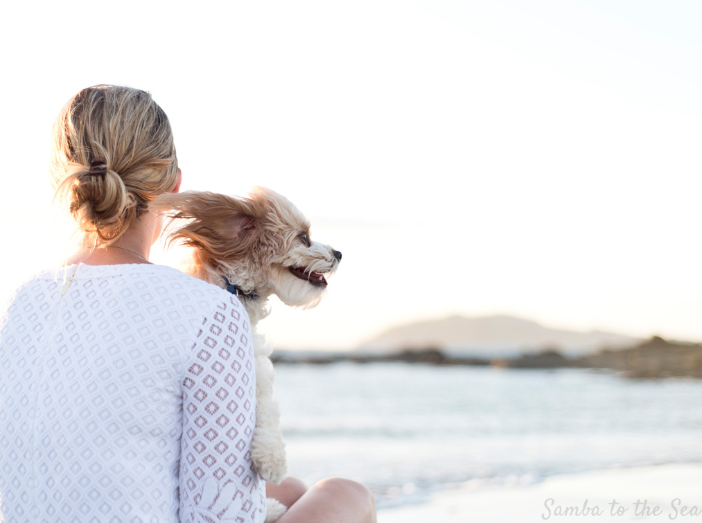 Waffles the Cavapoo enjoying the wind in Tamarindo, Costa Rica. Theresa is wearing the Lilly Pulitzer Mara Scallop Hem Lace Dress. Photographed by Kristen M. Brown, Samba to the Sea Photography.