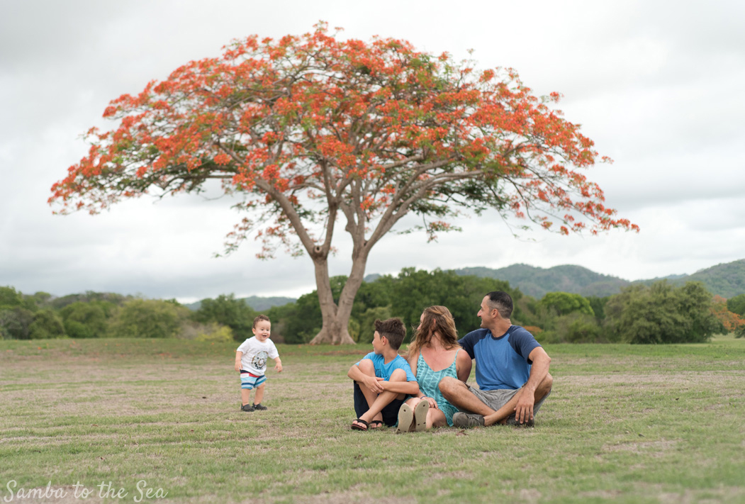 Toddler running around his family during family photo session in Playa Grande, Costa Rica. Photographed by Kristen M. Brown, Samba to the Sea Photography.