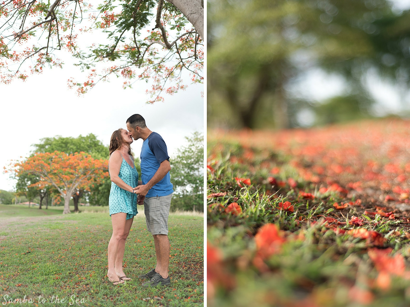 Husband and wife kissing under a Malinche tree in full bloom in Playa Grande, Costa Rica. Photographed by Kristen M. Brown, Samba to the Sea Photography.