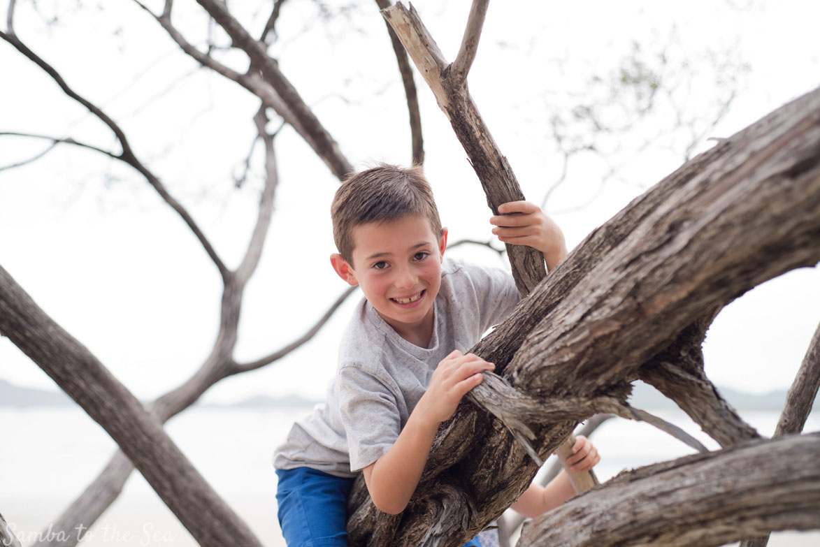 Young boy climbing a tree on the beach in Costa Rica. Photographed by Kristen M. Brown, Samba to the Sea Photography.
