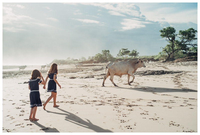Sisters walking on the beach with beach cows in Playa Avellanas Costa Rica. Photographed by Kristen M. Brown, Samba to the Sea Photography.