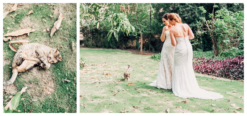 Tropical wedding in Tamarindo Costa Rica. Beautiful tropical gardens in Tamarindo Costa Rica. Photographed by Kristen M. Brown, Samba to the Sea Photography.