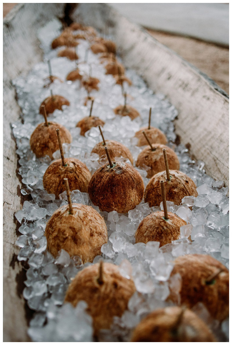 Coconuts on ice. Pangas Beach Club wedding. Photographed by Kristen M. Brown, Samba to the Sea Photography.