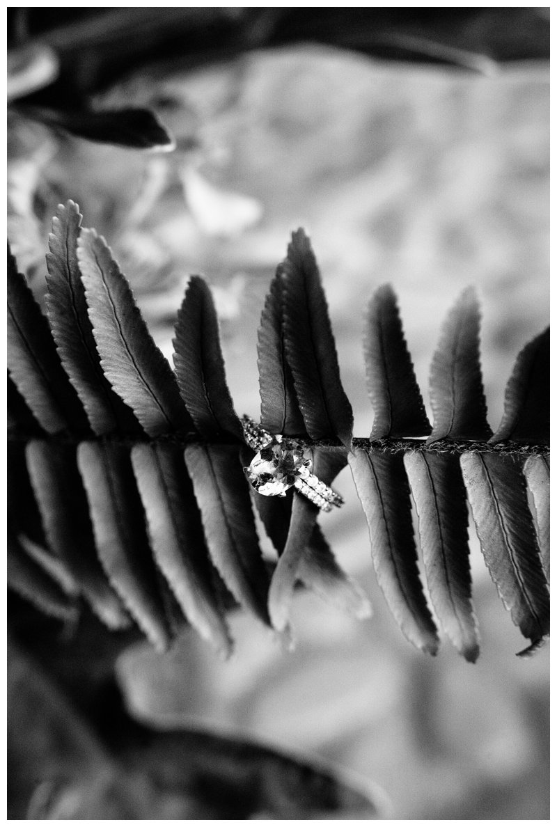 Wedding ring detail on fern for a beach wedding in Tamarindo Costa Rica at Pangas Beach Club. Photographed by Kristen M. Brown, Samba to the Sea Photography.
