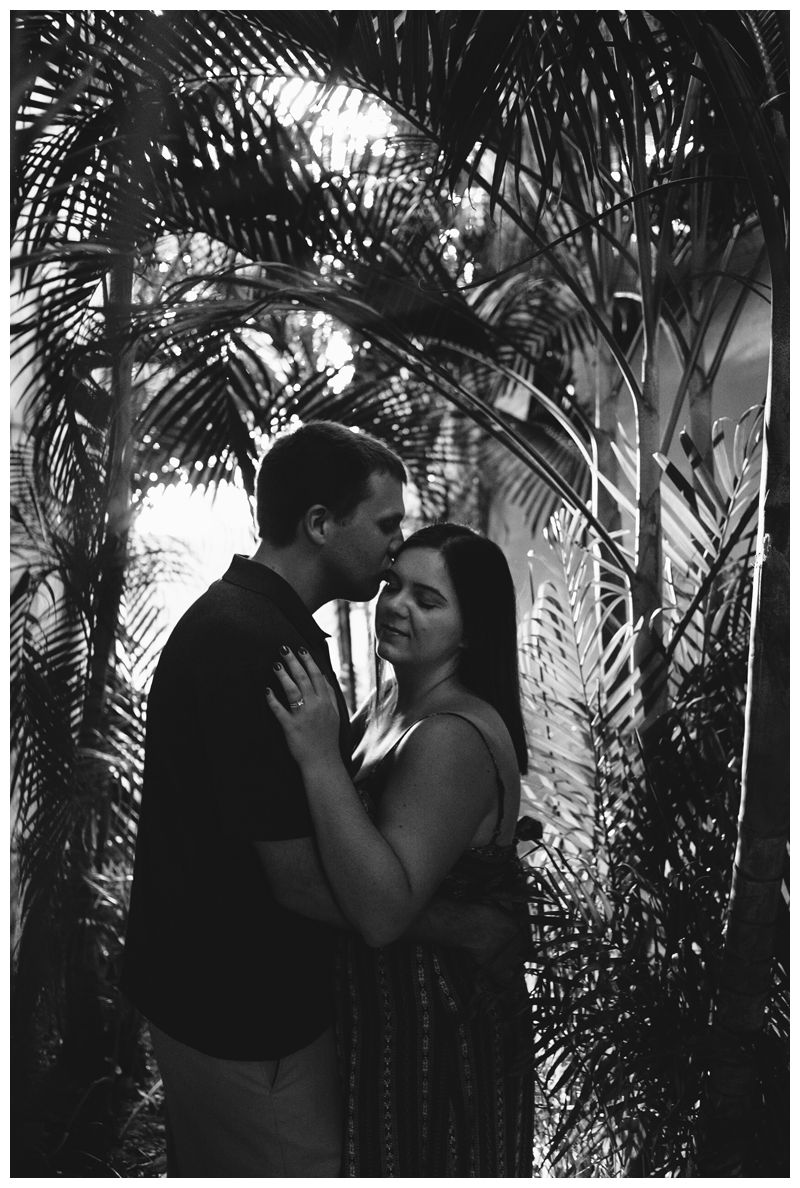 Husband kissing his wife in a secret palm tree walk way in beautiful Las Catalinas during anniversary photos. Photographer in Las Catalinas Costa Rica. Photographed by Kristen M. Brown, Samba to the Sea Photography.
