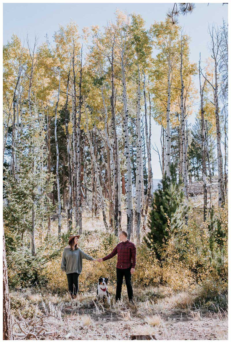 Couple holding hands under a golden Aspen grove with their dog. Fall couple's photos in Rocky Mountain National Park Colorado. Photographed by Kristen M. Brown, Samba to the Sea Photography.