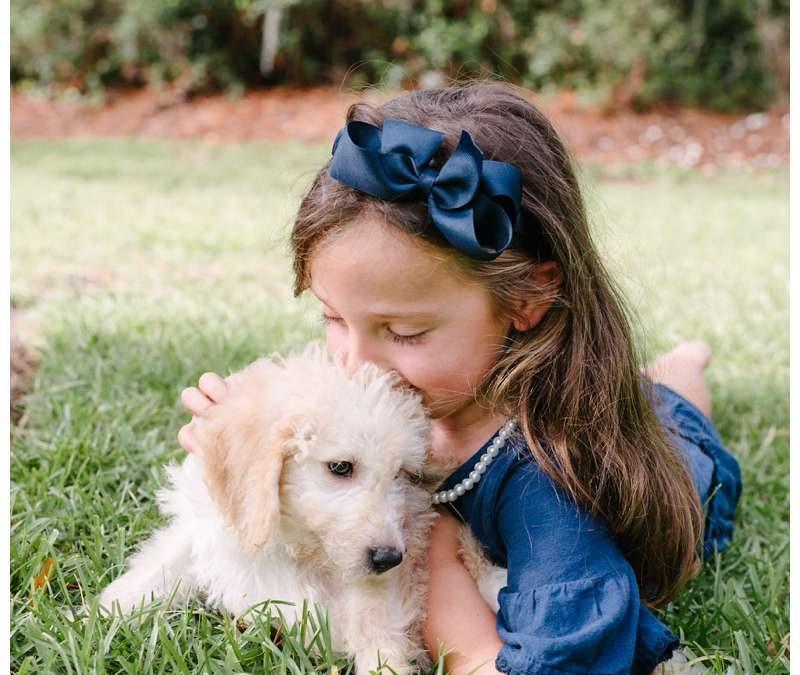 New Puppy Family Photos in Savannah at The Landings || Kang Family
