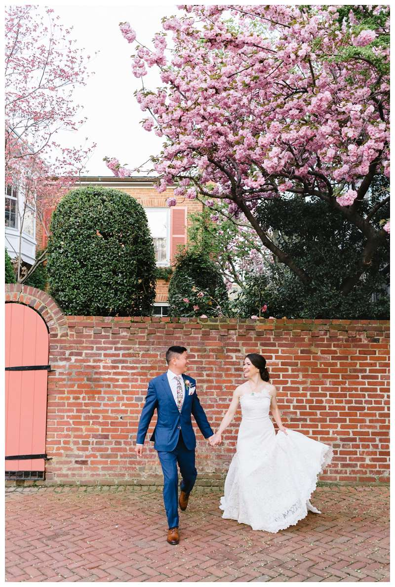 Bride and groom holding hands under a blooming Cherry Blossom after their intimate historic Alexandria Virgina spring wedding. Photographed by Kristen M. Brown of Samba to the Sea.