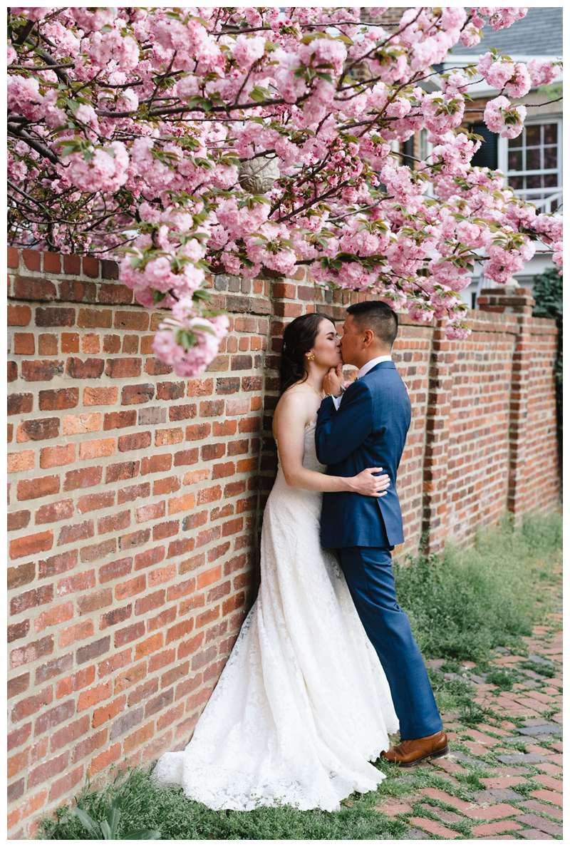 Bride and groom kissing under a blooming Cherry Blossom after their intimate historic Alexandria Virgina spring wedding. Photographed by Kristen M. Brown of Samba to the Sea.